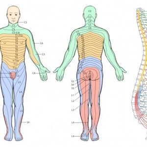 The 9-Minute Rule for What Is the Most Effective Pain Relief for Sciatica? Symptom