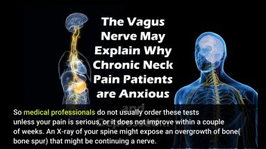 All About Traumatic Sciatic Nerve Injury and Effectiveness of Spinal