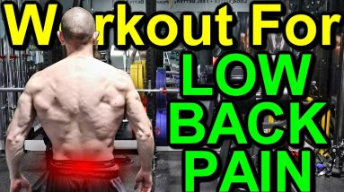 Lower Body WORKOUT for LOW BACK PAIN | Lower Body EXERCISES for Low Back Pain | Low Back Pain RELIEF