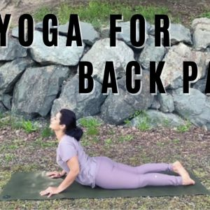 Best Exercises & Yoga Stretches for Back pain (Lower / Upper back )| Reduce back pain