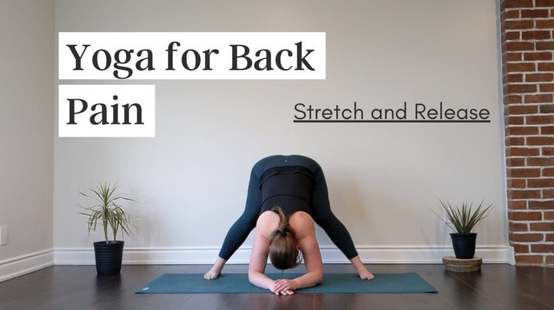 Yoga For Back Pain Relief / Flow and Twist!