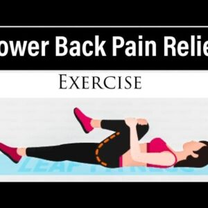 Lower Back Pain Relief  Exercises | #exercise