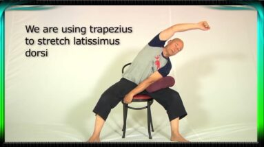Simple Lower Back Pain Relief   Lower Back Stretches with Chair   Fitly   Back Pain Relief Exercise